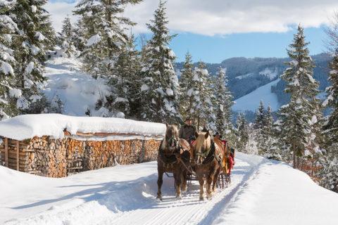 Pferdeschlittenfahrten - Winterurlaub in der Urlaubsregion Hochkönig, Ski amadé